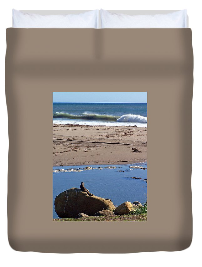 Surf Watching Squirrel Duvet Cover featuring the photograph Surf Watching Squirrel by Jennifer Robin