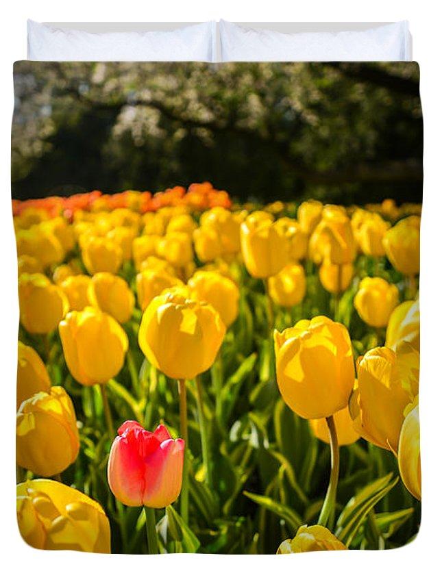 Longwood Gardens Photographs Duvet Covers