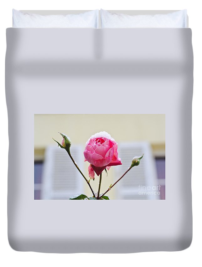 Survival Against Odds Duvet Cover featuring the photograph Survival by Lana Enderle