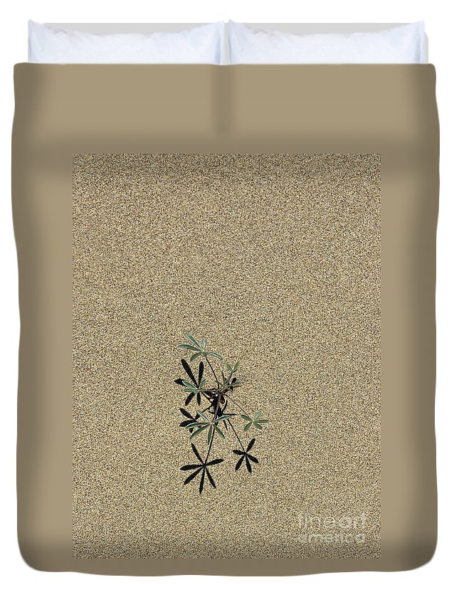 Sand Duvet Cover featuring the photograph Survival Of The Fittest by Sharon Elliott