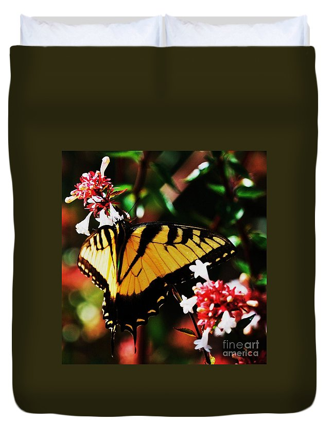 Swallowback Butterfly Nature Animal Art Portrait Nature Tranquil Home Decor Spring Outdoors Jamestown Va Close Up Work Delicate Wings Wood Print Poster Print Canvas Print Metal Frame Available On Greeting Cards Tote Bags T Shirts Duvet Covers Throw Pillows Shower Curtains Mugs Pouches Weekender Tote Bags And Phone Cases Duvet Cover featuring the photograph Swallowback Butterfly # 1 by Marcus Dagan