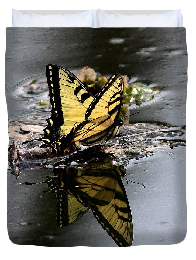 Goldenrod Duvet Cover featuring the photograph Swallowtail - Butterfly - Reflections by Travis Truelove