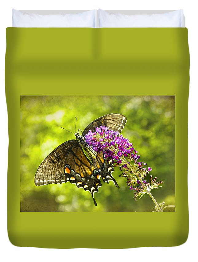 Swallowtail Butterfly Duvet Cover featuring the photograph Swallowtail Butterfly by Sandi OReilly