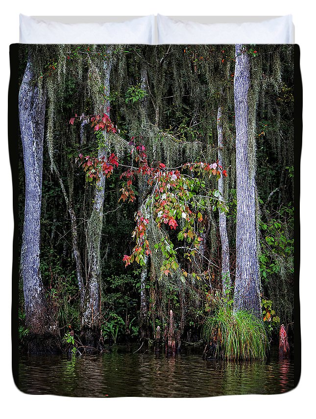 Swamp Duvet Cover featuring the photograph Swamp Beauty by Diana Powell