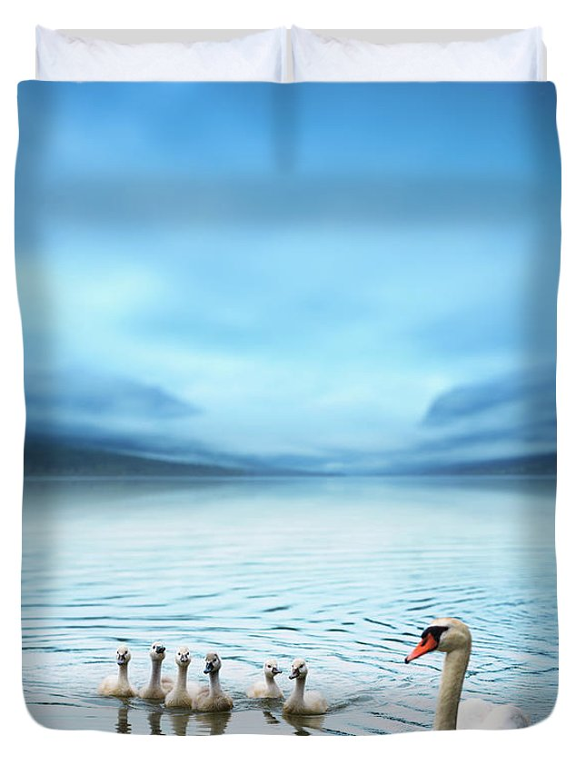 Scenics Duvet Cover featuring the photograph Swan Family On The Lake by Borchee