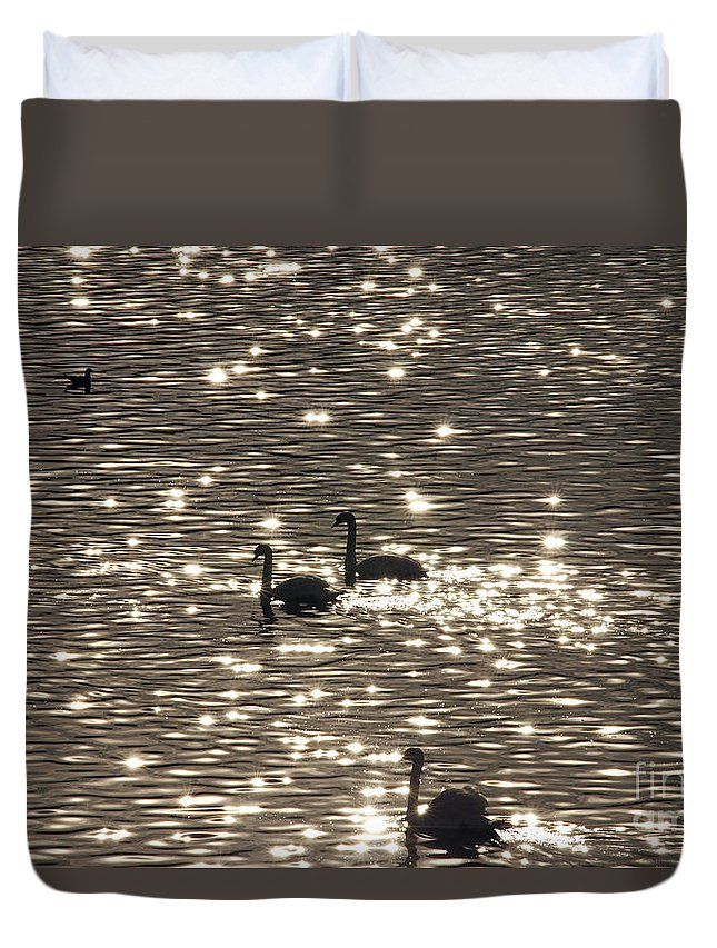 Nature Duvet Cover featuring the photograph Swan Lake by Michal Boubin