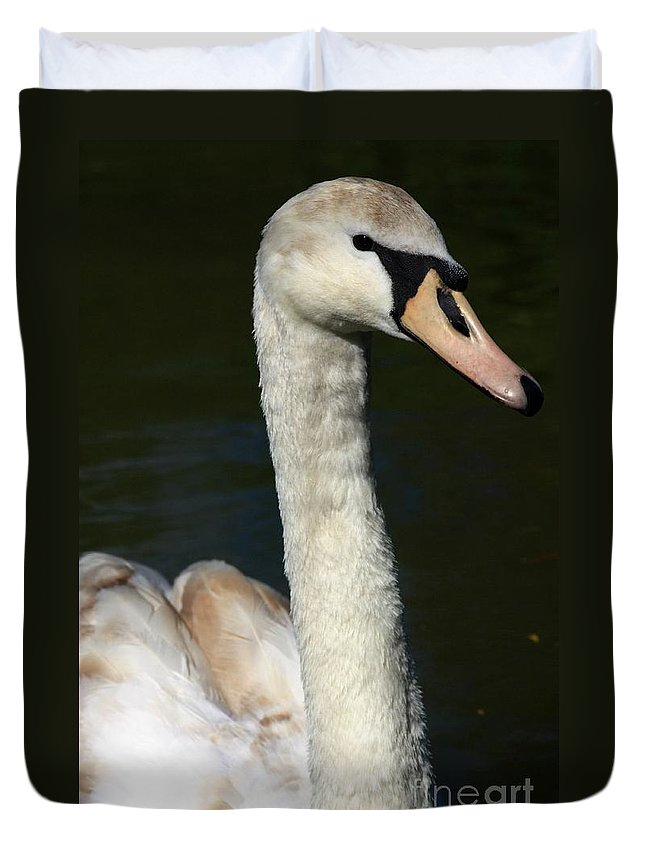 Swan Duvet Cover featuring the photograph Swan Profile by Jeremy Hayden