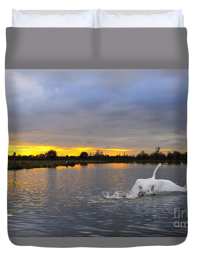 England Duvet Cover featuring the photograph Swan Taking Off by Lana Enderle