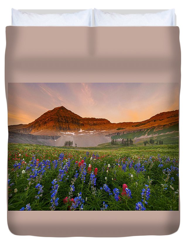 Landscape Duvet Cover featuring the photograph Sweeping Gaze by Emily Dickey