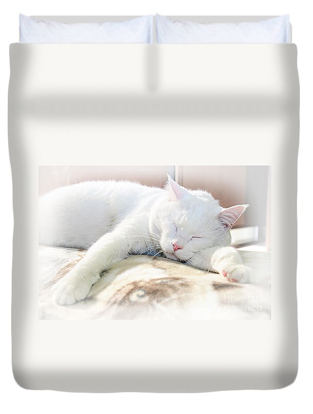 Andee Design Cats Duvet Cover featuring the photograph Sweet Dreams by Andee Design