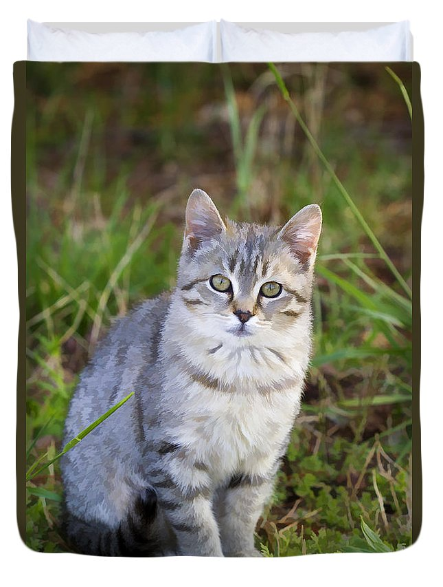 Tabby Duvet Cover featuring the photograph Sweet Little Tabby Kitten by Kathy Clark