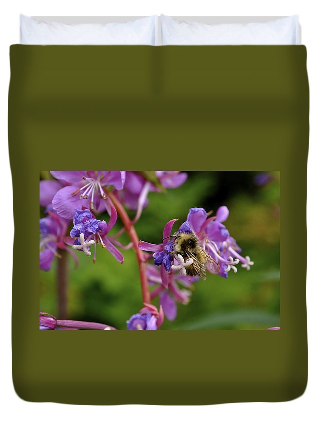 Bee Duvet Cover featuring the photograph Sweet Nectar by Cathy Mahnke