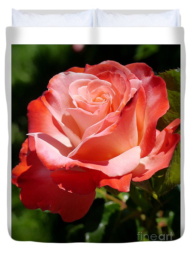 Rose Duvet Cover featuring the photograph Sweet Rosie by Christiane Schulze Art And Photography
