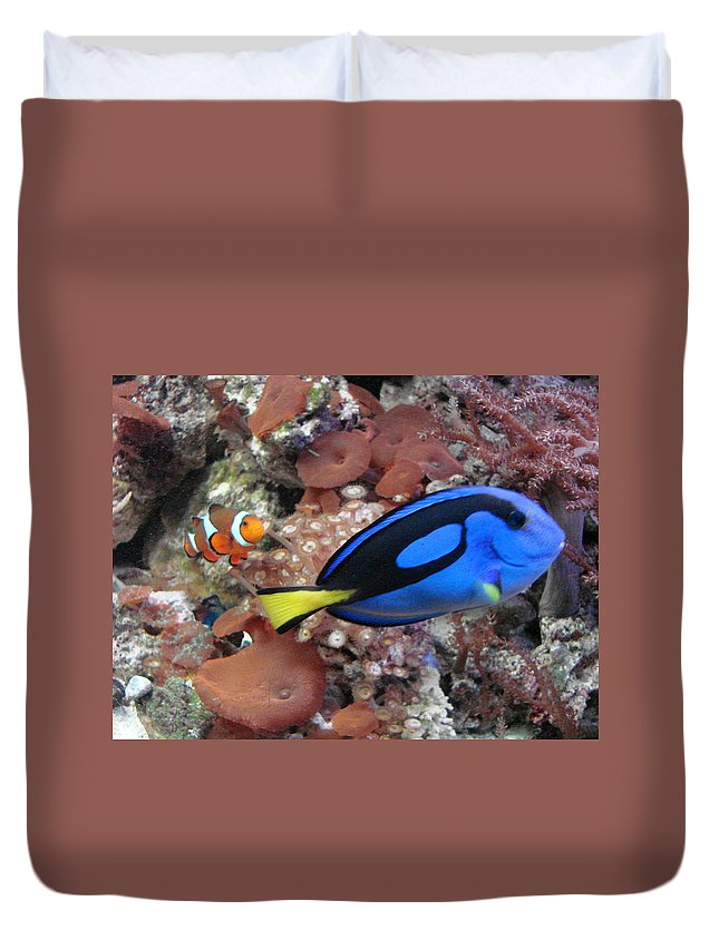 Tropical Fish Duvet Cover featuring the photograph Swim by Mary Halpin