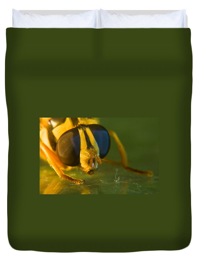 Syrphid Duvet Cover featuring the photograph Syrphid Eyes And Antennae by Douglas Barnett