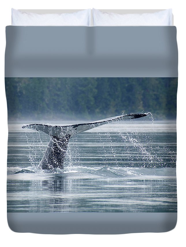 One Animal Duvet Cover featuring the photograph Tail Of Humpback Whale by Grant Faint