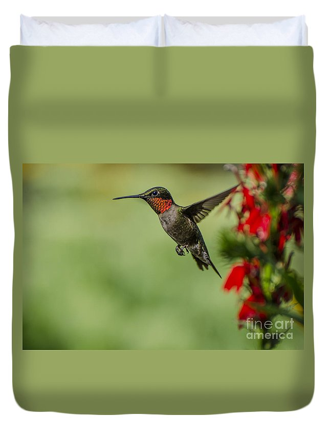 Ruby Throated Hummingbird Duvet Cover featuring the photograph Taking A Break by Judy Wolinsky