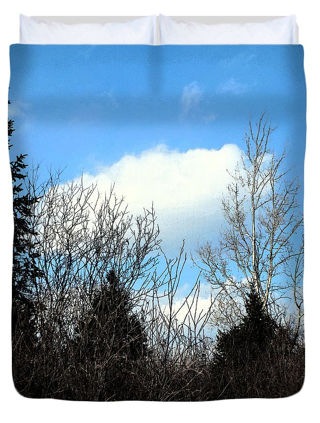 Birch Duvet Cover featuring the photograph Tall Birch by William Tasker