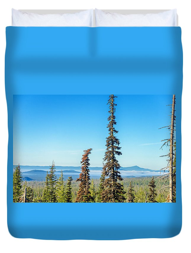 Forest Duvet Cover featuring the photograph Tall Pine Trees And Hilly Background by Jess Kraft