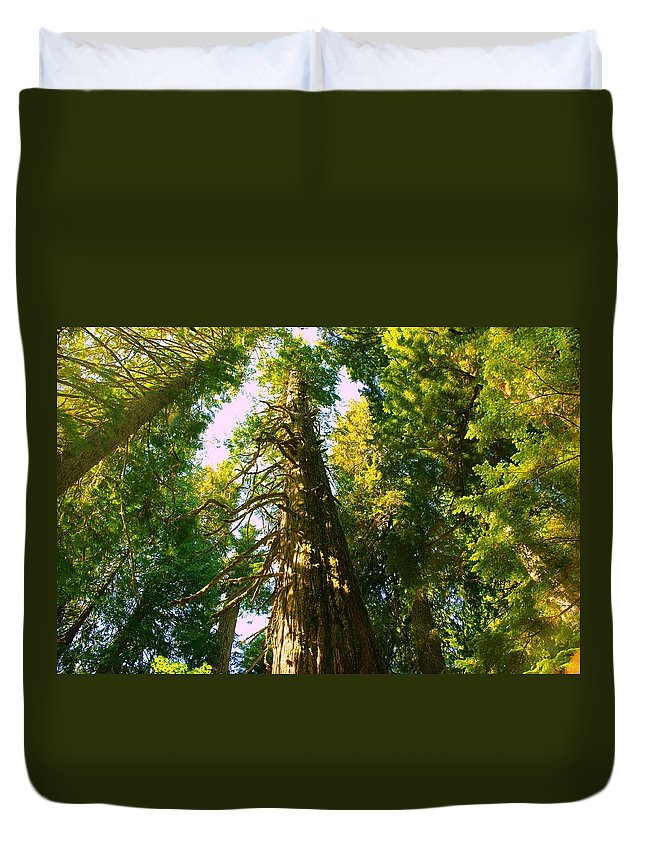 Duvet Cover featuring the photograph Tall Tall Trees by Jeff Swan