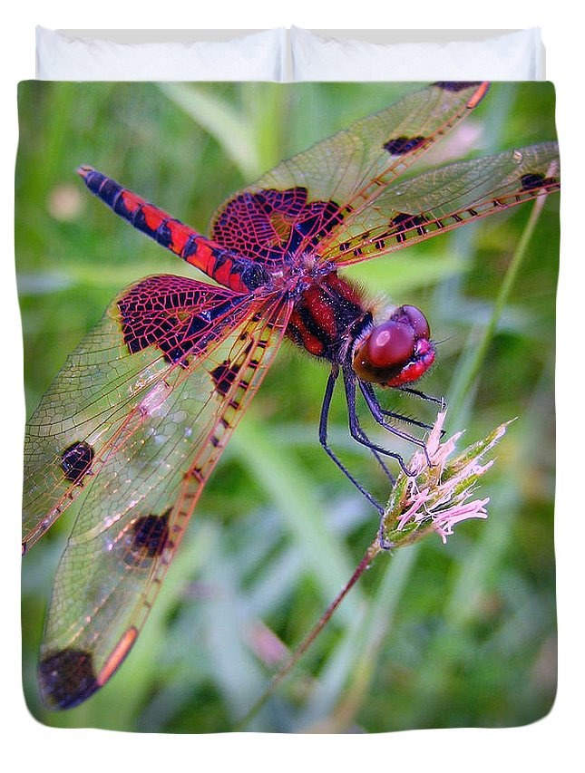 Dragonfly Duvet Cover featuring the photograph Tasty by Mary Cloninger