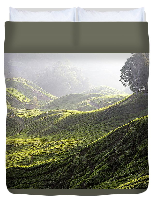 Tranquility Duvet Cover featuring the photograph Tea Estate by Daniel Osterkamp