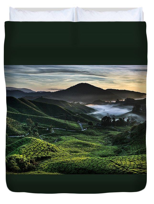 Tea Plantation Duvet Cover featuring the photograph Tea Plantation At Dawn by Dave Bowman