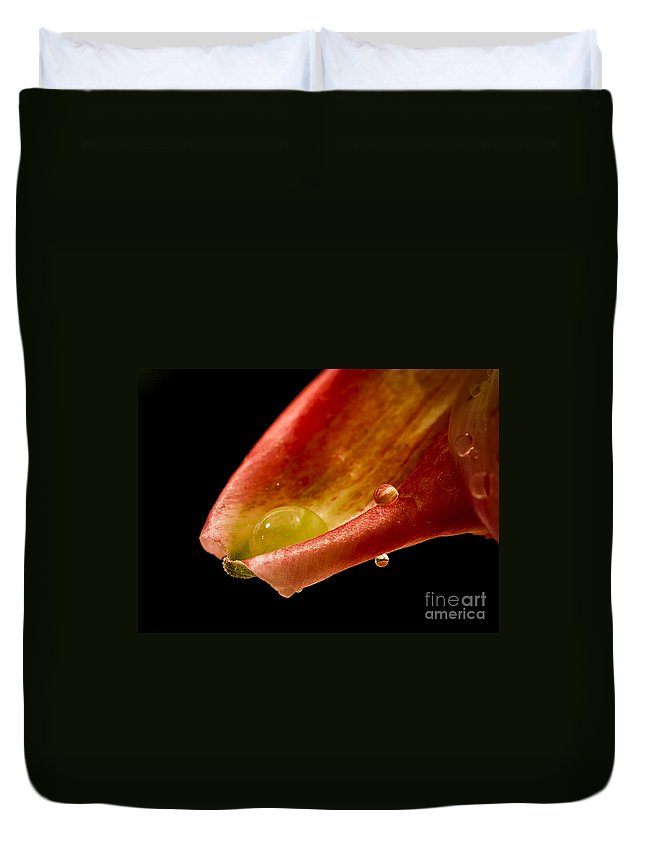 Lilly Duvet Cover featuring the photograph Tears On A Lilly by Warrena J Barnerd