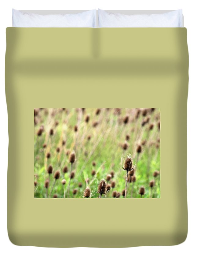 Thistle Duvet Cover featuring the photograph Teasel Meadow by Angela Rath