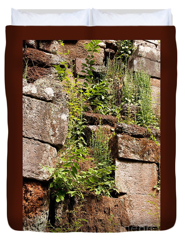 Ruined Duvet Cover featuring the photograph Temple Ruins 05 by Rick Piper Photography