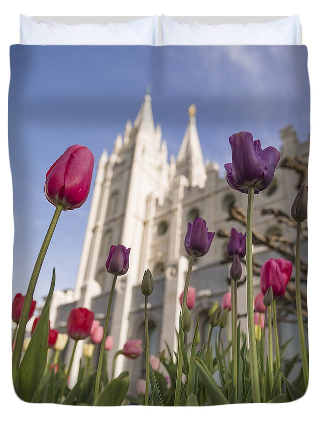 Temple Tulips Duvet Cover featuring the photograph Temple Tulips by Chad Dutson