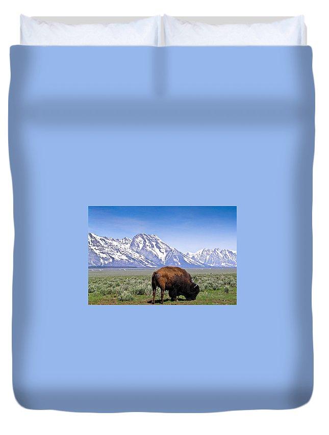 Tetons Duvet Cover featuring the photograph Tetons Buffalo Range by Douglas Barnett