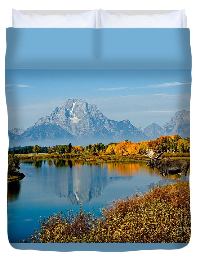 Outdoors Duvet Cover featuring the photograph Tetons With Moose by Anthony Mercieca