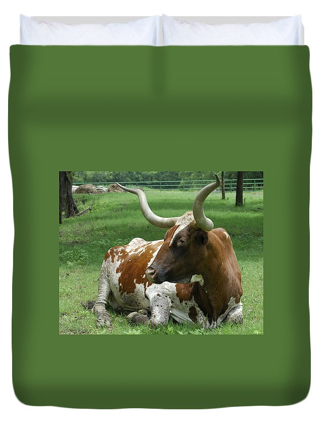 Texas+longhorn Duvet Cover featuring the photograph Texas Longhorn by Charles Beeler