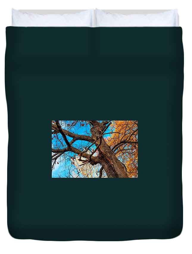 Autumn Duvet Cover featuring the photograph Texture Of The Bark. Old Oak Tree by Jenny Rainbow