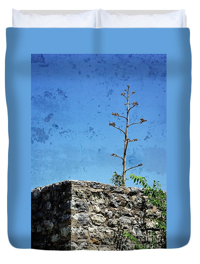 Textured Duvet Cover featuring the photograph Textured Ruins by Gary Richards