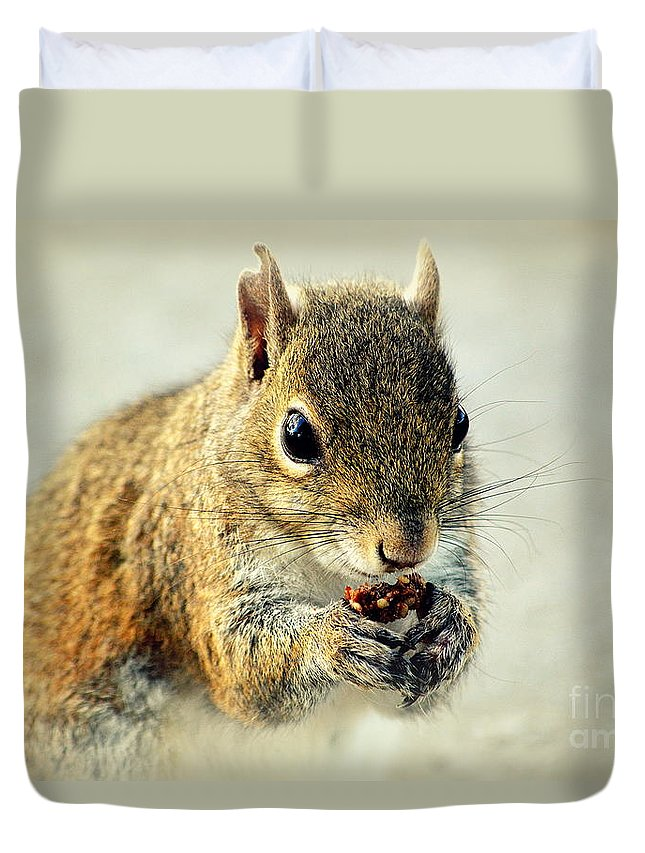 Squirrel Duvet Cover featuring the photograph That's Now Some Good Food by Susanne Van Hulst