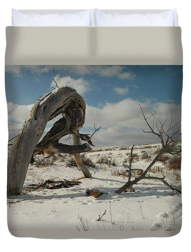 Trees Duvet Cover featuring the photograph The Agony Of Living Or Dying by Jeff Swan