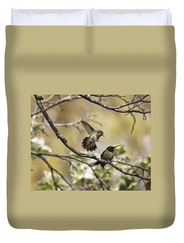 Ruby Throated Hummingbird Duvet Cover featuring the photograph The Attack by Michael Dougherty