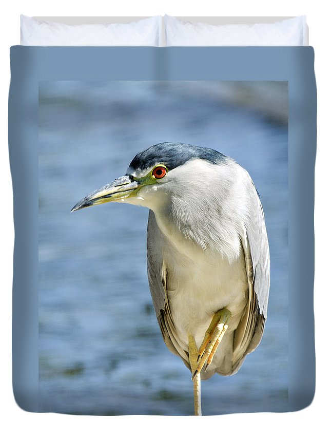 Green-crowned Heron Duvet Cover featuring the photograph The Balancing Act by Saija Lehtonen