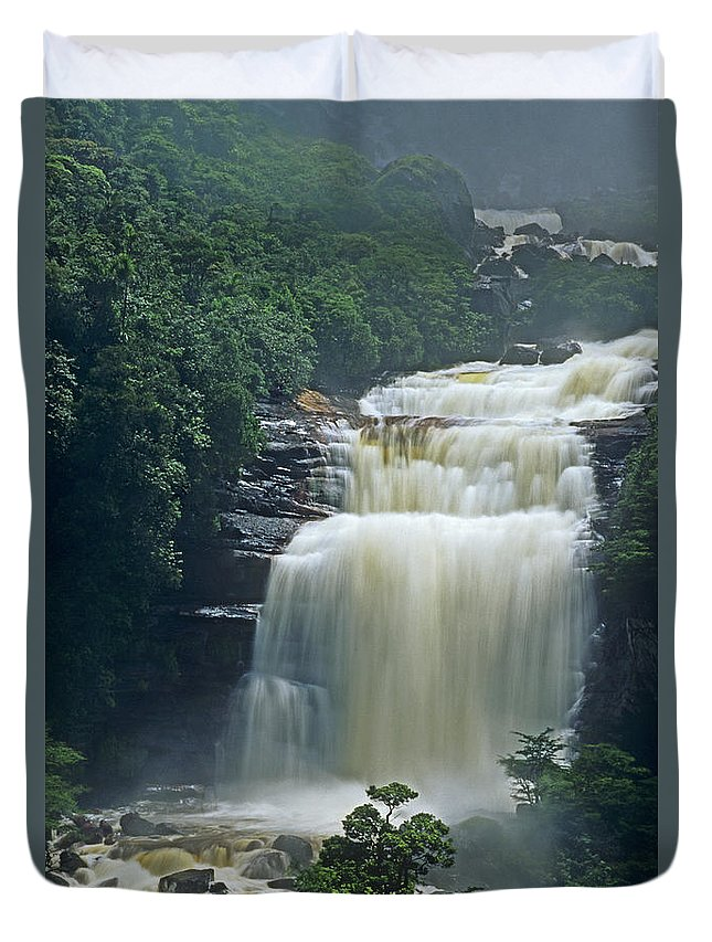 Venezuela Duvet Cover featuring the photograph The Base Of Angel Falls In Canaima National Park Venezuela by Dave Welling