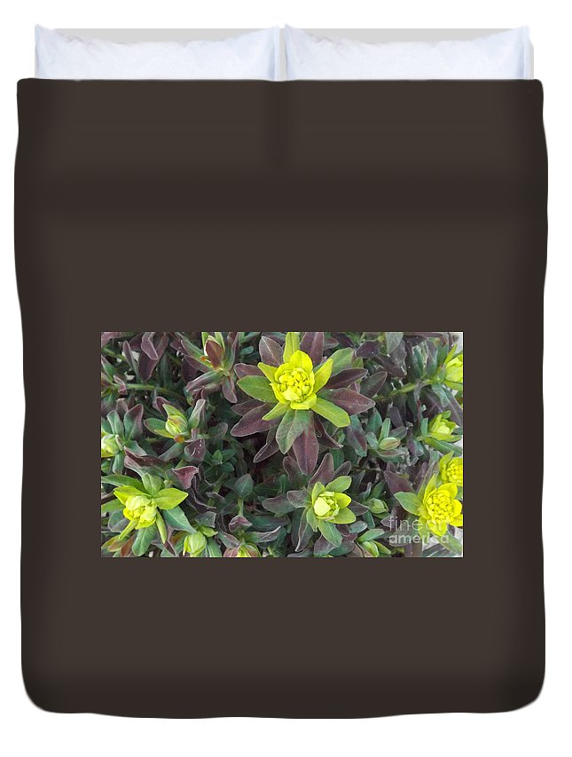Plant Duvet Cover featuring the photograph The Beauty Of The Bonfire by Brenda Brown
