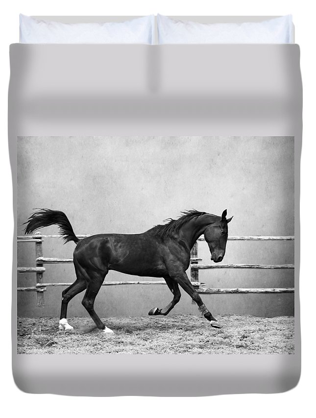 Animal Duvet Cover featuring the photograph The Beauty Of The Horse by Davandra Cribbie