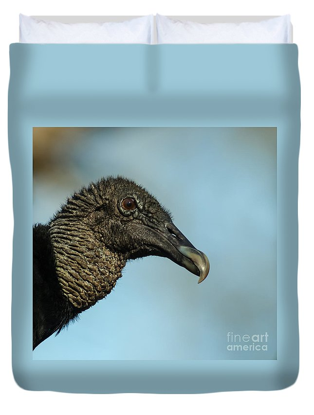 Animal Duvet Cover featuring the photograph The Black-headed Buzzard by Robert Frederick
