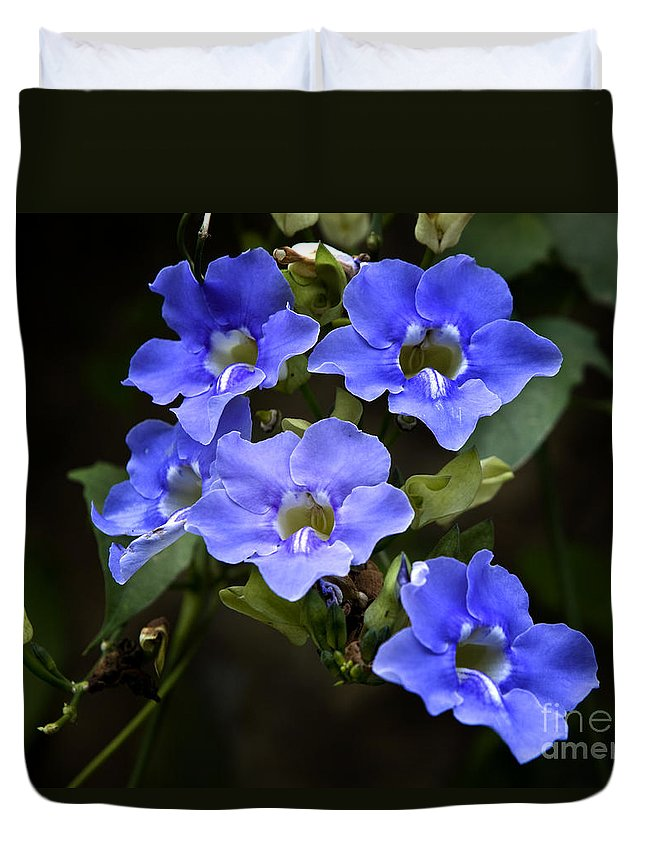Floral Duvet Cover featuring the photograph The Blues by David Millenheft