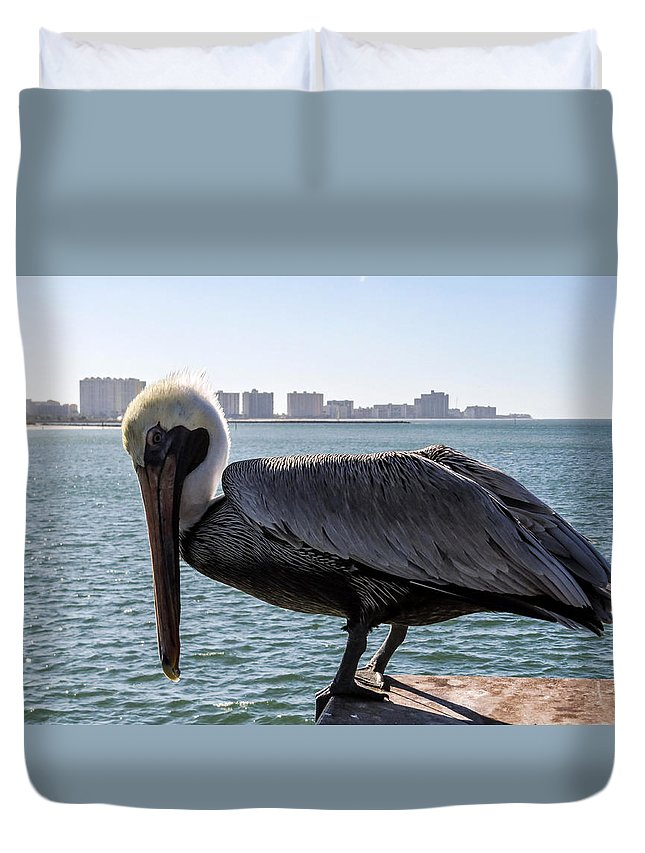 Pelican Duvet Cover featuring the photograph The Brown Pelican by Zina Stromberg