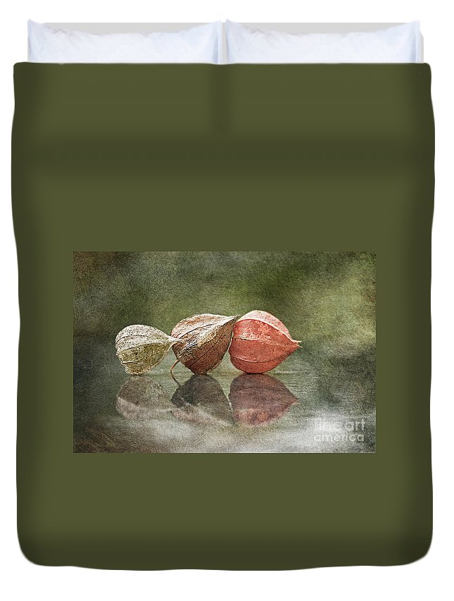 Withered Duvet Cover featuring the photograph The Charites by Maria Ismanah Schulze-Vorberg