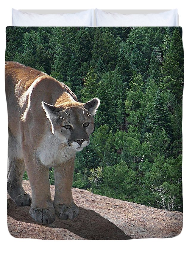 Cats Duvet Cover featuring the digital art The Cougar 1 by Ernie Echols