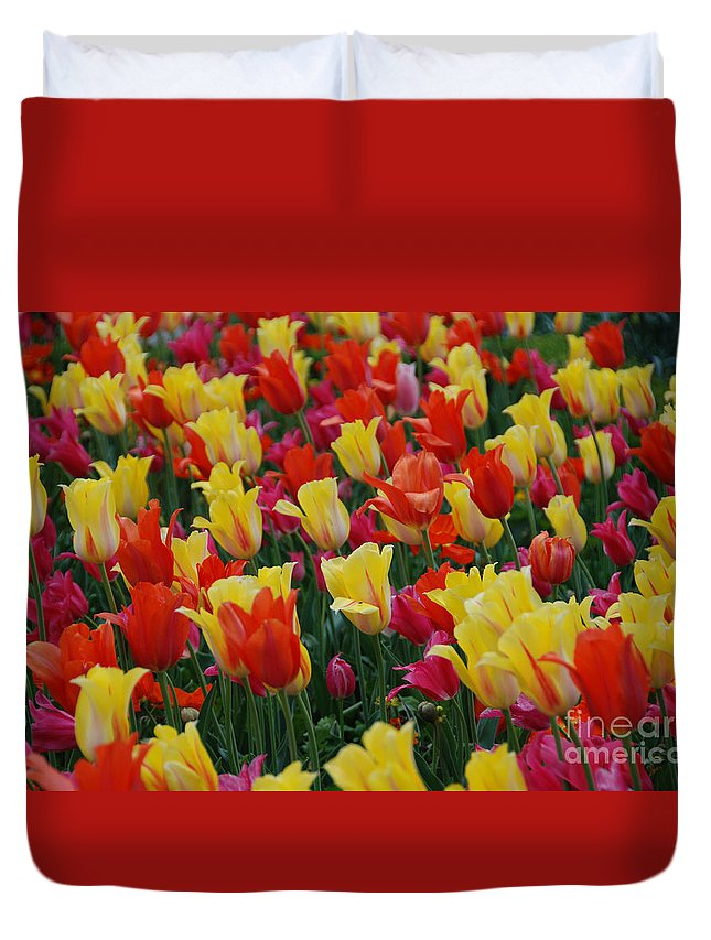 Tulips Duvet Cover featuring the photograph The Crowd by Jackie Farnsworth