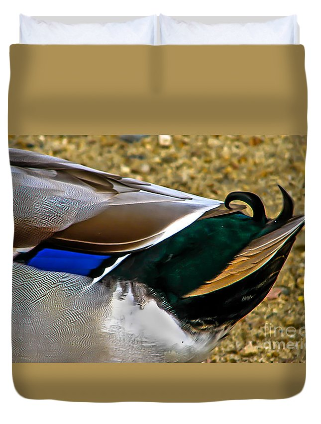 Birds Duvet Cover featuring the photograph The Curl by Robert Bales